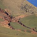 Hillside Erosion Caused By Run by Jason Edwards