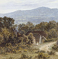Hindhead From Sandhills Witley by Helen Allingham