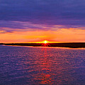 Hobcaw Barony Sunrise by Bill Barber