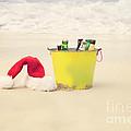 Holiday Cheer by Kim Fearheiley