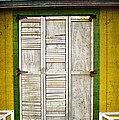 Holliwood Beach Door by Joan  Minchak
