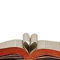 Holy Bible Heart 1 A by John Brueske