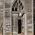 Holy Haven For Cats by J Laughlin