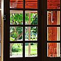 Home Garden Through Window by Sami Sarkis