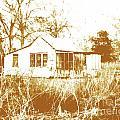 Home Place by Lizi Beard-Ward