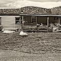 Home Sweet Home Sepia by Steve Harrington