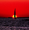 Home To Port In Key West 14m by Gerry Gantt