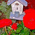 Home Tweet Home by Randy Rosenberger