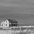 Homestead by HW Kateley