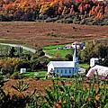 Homestead Of Faith by Christian Mattison