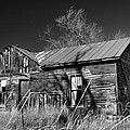 Homestead by Ron Cline