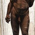 Homo Heidelbergensis by Kennis And Kennismsf