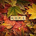 Hope-autumn by  Onyonet  Photo Studios