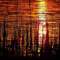 Horicon Marsh Sunset Wisconsin by Steve Gadomski
