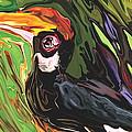 Hornbill by Rabi Khan