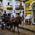 Horse And Buggy In Old Cartagena Colombia by David Smith