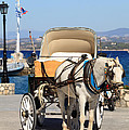 Horse And Buggy On Spetses by Paul Cowan