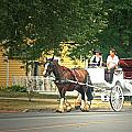 Horse And Carriage by Cyryn Fyrcyd
