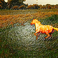 Horse Frolicking by Randall Branham