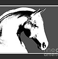 Horse In Black And White by Smilin Eyes  Treasures