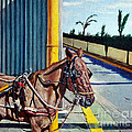 Horse In Malate by Christopher Shellhammer