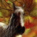 Horse On The Farm by Ericamaxine Price
