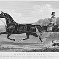 Horse Racing, C1850 by Granger