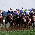 Horse Racing Rear View Of Horses Racing by The Irish Image Collection