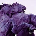 Horse Sculptures by Angel  Tarantella