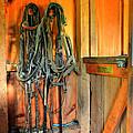 Horse Tack by Paul Ward