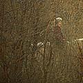 Horseback In The Garden by Lenore Senior