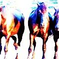 Horses-30 by Todd Sherlock
