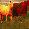 Horses Soft And Sweet by Randall Branham