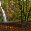Horsetail Falls by Mike Reid