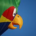 Hot Air Balloon 2 by Ernie Echols