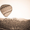 Hot Air Balloon On The Arizona Sonoran Desert In Bw  by James BO Insogna