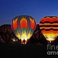 Hot Air Balloons At Dusk by Benanne Stiens