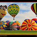 Hot Air Balloons by Jack Schultz