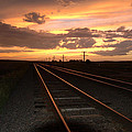 Hot Rails by Jerry McElroy
