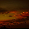 Hot Summer Night Sky by DigiArt Diaries by Vicky B Fuller