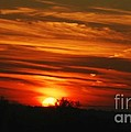 Hot Summer Night Sunset by Peggy Franz