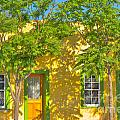 House In The Barrio by Larry White
