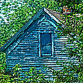 House In The Woods Art by Debbie Portwood