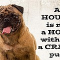 House Is Not A Home Without A Crazy Pug by Edward Fielding