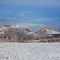 Houses In Winter by Gabriela Insuratelu