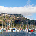 Hout Bay Harbour by Fabrizio Troiani