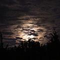 Howling Werewolves by Kendra Steiner
