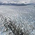 Hubbard Glacier, Gilbert Point by Matthias Breiter