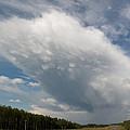 Huge Cloud Yellowhead by David Kleinsasser