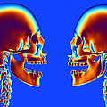 Human Skulls by Pasieka